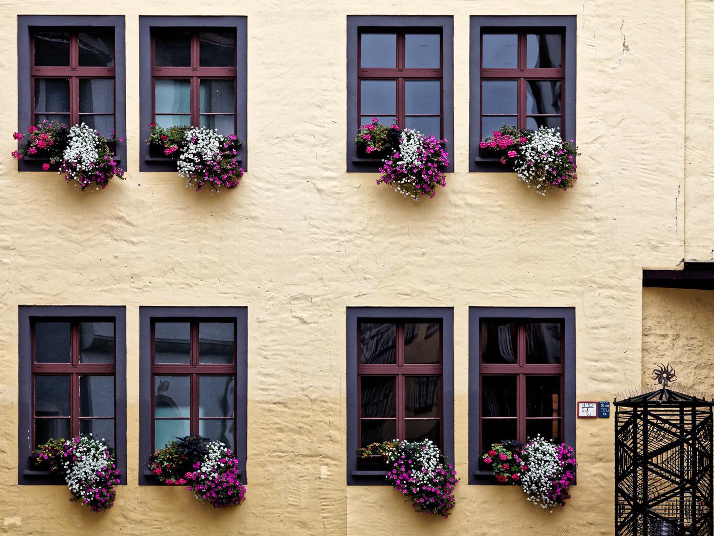 Erfurt, Grosse Arche