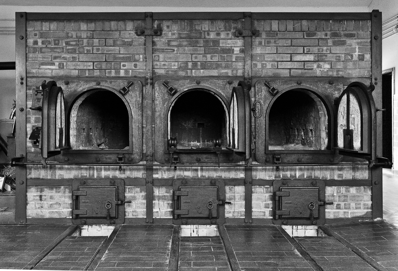 Buchenwald 4